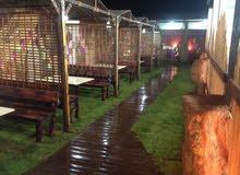 2800مترعلي رئيسي بجانب مطعم الحيطة مطعم مجهز ومابيت عمال تفاصيل بداخل