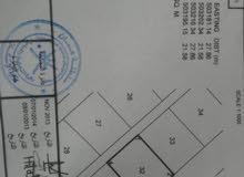 ارض للبيع فولاية الخابوره قصبية ألبوسعيد