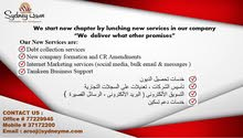 legal and consulting services