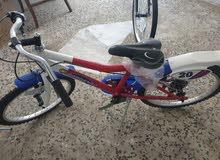 دراجات بوقنو إستيراد من ايطاليا
