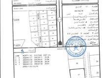 12 قطعة ارض سكنية بركاء حي عاصم