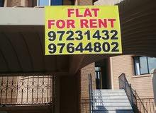 شقة في سلوي للايجار من المالك مباشر