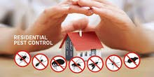 specialist in all pest controlling needs with 1 years GUARANTEE