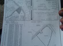 البيع أرض زراعية في مركز مدينة صحار