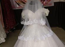 زفافات مستورده