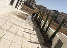 شقة أرضية  دوبلكس في اجمل موقع حي الصحابة عميش للبيع