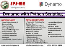 #DYNAMO WITH #PYTHON SCRIPT BY EXPERTS +