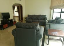 Delightful 2 BR  Fully Furnished  apartment Walking distance to Oasis Mall For Rent