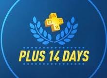 حسابات بلس 14 يوم للبيع