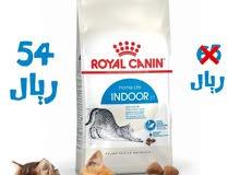 رويال كانين ان دور + 7 طعام القطط الجاف 1.5 ك ب 54 ريال فقط