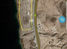 13 دونم علي الشاطيئ في البحر الميت  منطقة السويمة السعر 690للمتر