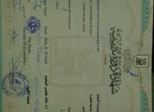 انا أسمى أحمد من مصر ابحث عن عمل