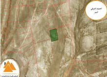أراضي استثمارية في (جنوب عمان) الحمام الشرقي