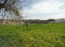 ارض للبيع في منطقة بدر الجديده المساحة 7 دونم على شارعين