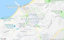الاسكندرية المعمورة البلد بجوار محطة القطار