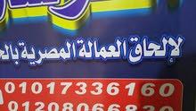 شركة إلحاق عمالة مصرية للداخل و الخارج