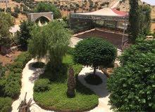 للعائلات فقط مزرعه باطلالة بانوراما في عمان