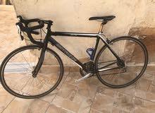 دراجة هوائية للسباقات نوع فرنسي موتاتشي