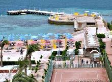 عروض شركة هورجادا تورز لحجز الفنادق والرحلات بالغردقة