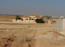 ارض موقع مميز للبيع في شارع المطار/القسطل