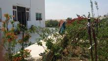 منزل مسطح 180م على مساحة ارض 17 دونم للبيع في المفرق