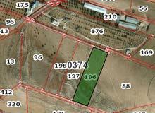 ارض للبيع بغريسا مساحتها 5 دونمات على شارعين ومرتفعه