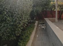 شقه ارضيه مع حديقه للايجار على مستوى الشارع خلف برادايس 6000د