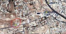 قطعتين متلاصقات للبيع في منطقة أبو نصير أم بطمة مرتفعة و مطلة
