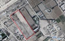 للبيع و الاستثمار أرض مسجلة بكينج مريوط