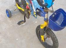 دراجة12