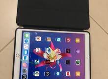 iPad Pro 10.5 Rose Gold 256GB wifi