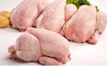 بيع دجاج الحي