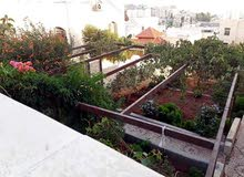 neighborhood Jerash city -  sqm house for rent