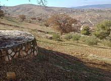 اراضي في الاردن في بيرين تبعد عن العاصمة عمان 7 كيلو مميزة جدا جدا وفخمة