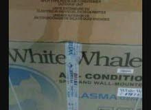 وايت ويل lomo الجديد بيكف مساحه  من 12 الي 15 مترا