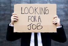 محتااج وظيفة - القصيم