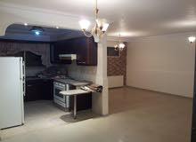 شقة تسوية فارغة للبيع في مرج الحمام