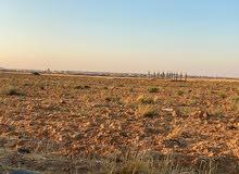 أرض سكنية للبيع في المفرق الصيوان الغربي بجانب مخيم الزعتري - مستقبل واعد ومشرق