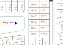 ارض للبيع بحي الورود رقم 2786 مساحة717 جنوب شارع 25 للسوم