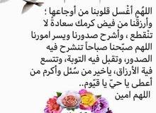 معلمة لغة عربية وتربية إسلامية
