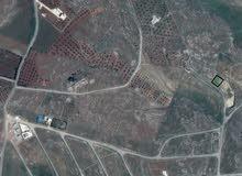ارض خلف  جامعة  جرش والنبي هود مساحتها 500م