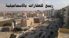 شقق للايجار بالاسماعيلية عقارات الاسماعيلية مدينة الاسماعيلية 01226668997
