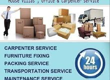professional mover packer service house office store shop Villa shifting
