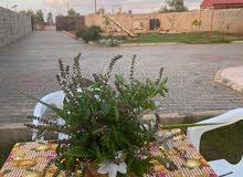 استراحة في مشروع بوجرار (توكرة)