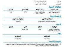 محاسب سوداني متحدث الإنجليزية