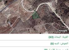 ارض للبيع في ابوالسوس حوض 6الدبه من أصل 4دنم  و800متر