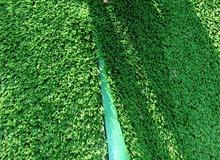 صيانة ملاعب العشب الصناعي وتمشيط الملعب