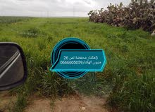 أرض للبيع 3 هكتار. 22 كلمتر من برشيد فلاحية جيدا وسكنية