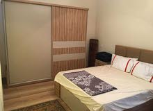Apartment is Furnished for rent in Casa Compound