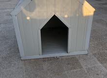 بيت كلب للبيع